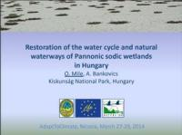 Mile, O, Bankovics, A. (2014): Restoration of the water cycle and natural waterways of Pannonic sodic wetlands in Hungary.